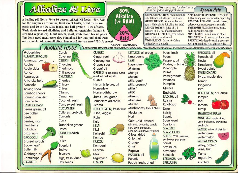 wild rose detox food list pdf