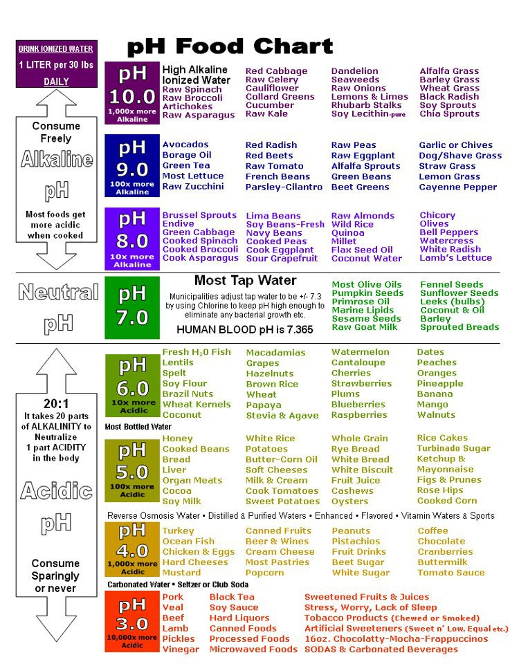 Food Amp Herbs Chart Benefits Byzantineflowers