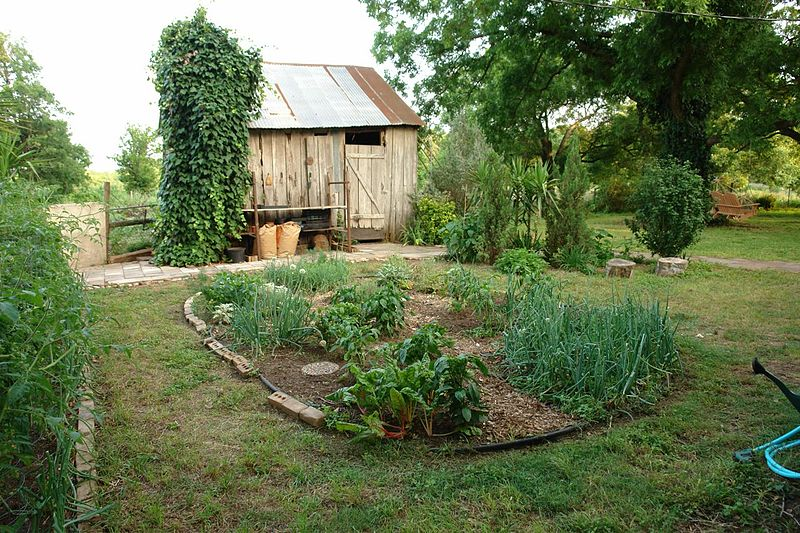 Merveilleux Vegetable Garden Ideas Minnesota Exellent Vegetable Garden Ideas For  Minnesota Paint Speckled