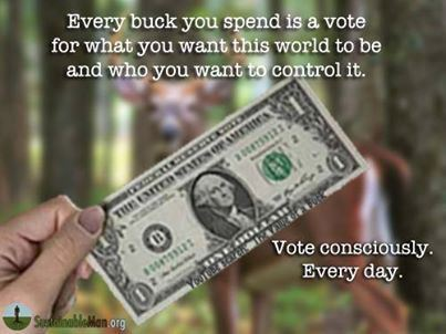 voting-through-money